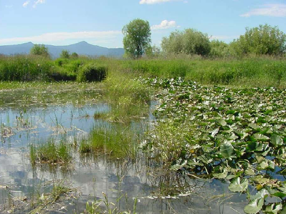 Wood River Wetland, OR - Credit: BLM