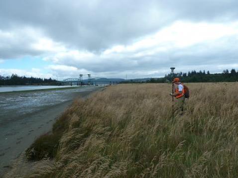Tidal marsh - Credit: USGS