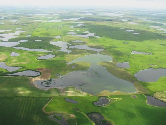 Prairie Pothole region - Credit: USFWS