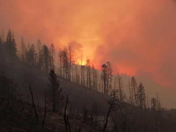 Wildfire in Sierra National Forest, CA - Credit: USFS
