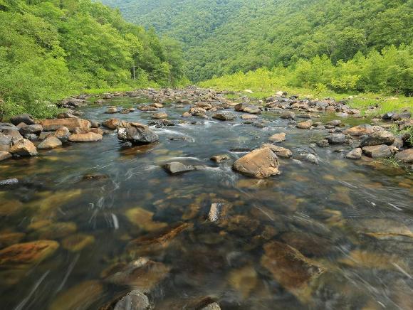Maury River, VA - Alan Cressler