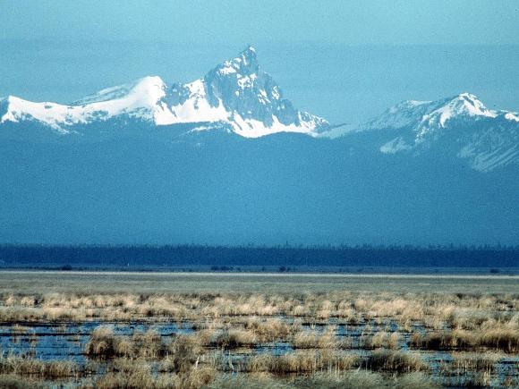 Lower Klamath National Wildlife Refuge, OR - Credit: USFWS