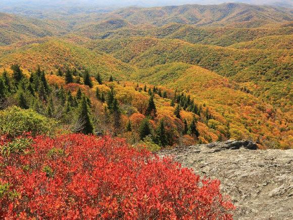 Blue Ridge Mountains - Credit: Alan Cressler