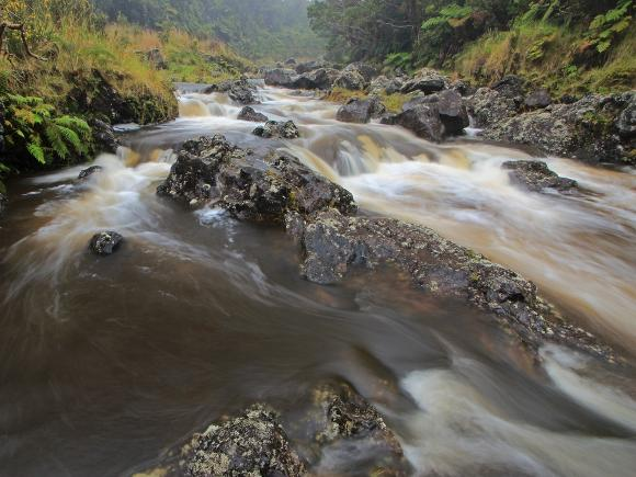 Wailuku River, Hawaii - Credit: Alan Cressler