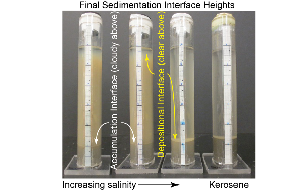 Sedimentation test definitions of the accumulation and depositional interfaces.