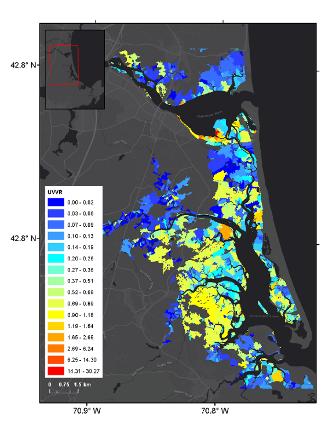 Graphic that shows UVVR in marsh units of PIEPR salt marsh complex.