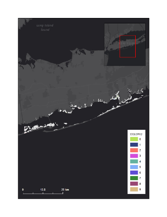Graphic of conceptual marsh units of FIIS salt marsh complex overlaying basemap.