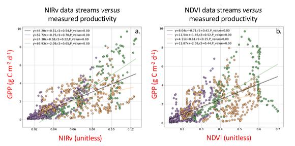 NIRv remote sensing data versus NDVI