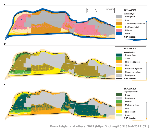 Examples of substrate type, vegetation type, and vegetation density raster la...